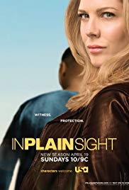 In Plain Sight (Dizi)