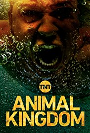 Animal Kingdom (Dizi)