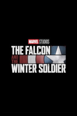 The Falcon and the Winter Soldier (Dizi)